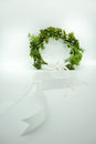 Gypso and green leaves crown with long white ribbon for flower g