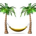 Hängmatta på högväxta palmträd front view Fotografering för Bildbyråer