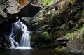 Härlig skogvattenfall Royaltyfri Bild