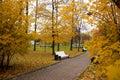 Hösten benches l park Royaltyfri Foto