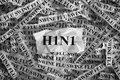 H1N1- Swine Flu Royalty Free Stock Photo