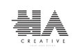 HA H A Zebra Letter Logo Design with Black and White Stripes