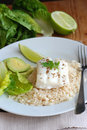 Haddock with rice Royalty Free Stock Photography