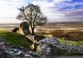 Hadleigh tower ancient castle in the essex countryside Stock Photography