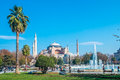 Hagia sophia istanbul the famous museum ex basilica Stock Photos