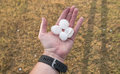 Hail Stones in Hand Royalty Free Stock Photo