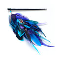 Hair accessory with different blue and violet feathers over white Stock Image