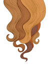 Hair background. Color hairdressing salon frame design Royalty Free Stock Photo
