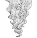 Hair background. Outline hairdressing salon frame design Royalty Free Stock Photo