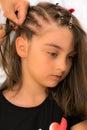 Hair braids Royalty Free Stock Photo