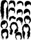Hair - dress  (women and men) Stock Images