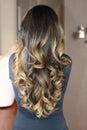 Hair model Royalty Free Stock Photo