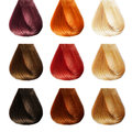 Hair palette colors set tints Stock Photography