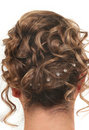 Hair Style Royalty Free Stock Photography