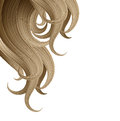 Hair style and haircare design template on white background Stock Photography