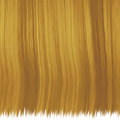 Hair texture brown for background or design Royalty Free Stock Images