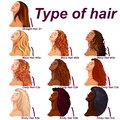 Hair types chart displaying all types and labeled Royalty Free Stock Photo