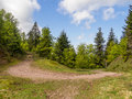 Hairpin turn in nature natural the vosges hills france Stock Image