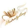 Hairstyling logo