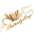 Hairstyling logo Royalty Free Stock Photo