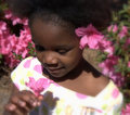 Haitian Girl Stock Images