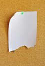 Half-burned white sheet pinned on cork bulletin board Royalty Free Stock Photo