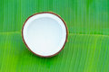 Half of coconut on green banan leaf background Stock Photography