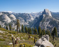 Half Dome and Yosemite Valley Royalty Free Stock Photography