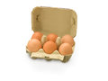 Half a Dozen Organic Eggs Royalty Free Stock Photo