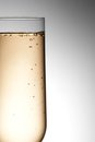Half flute glass of champagne with bubbles against gray background Stock Photography
