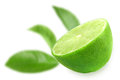 Half of fresh lime and focus green leaf on backdrop placed on white background close up studio photography Royalty Free Stock Photos
