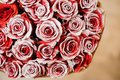 Half image of round romantic bouquet of red pion-shaped roses decorated with white powder