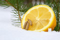 Half of lemon and tiny cones outdoors Stock Images