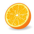 Half orange illustration Royalty Free Stock Photos