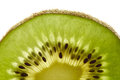 Half a slice of fresh kiwi part green Royalty Free Stock Image