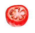 Half of tomato watercolor image ripe Stock Photos