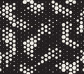 Halftone pattern. Snake skin style seamless pattern. Black and white background with halftone transition