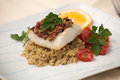 Halibut with olive tapenade crust baked garnished couscous fried cherry tomatoes and fresh parsley Stock Images