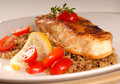Halibut seared on a bed of brown rice Royalty Free Stock Photo