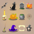 Halloween accessories and characters icons set vector illustration Royalty Free Stock Image
