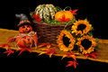 Halloween autumn decoration Royalty Free Stock Photos
