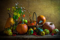Halloween autumn fall pumpkin setting table still life vintage autumnal with pumpkins rowan and quinces Stock Image