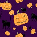 Halloween background black cat and pumpkins Royalty Free Stock Image