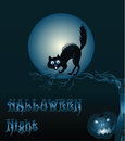 Halloween background with cat and pumpkin cartoon moon spiteful Stock Photography