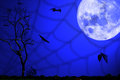 Halloween background with moon and bats Stock Photography