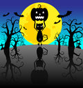 Halloween background with pumpkins and black cat on the night Stock Photo