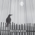 Halloween background with raven on fence Stock Images