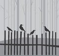 Halloween background with ravens on fence Stock Images