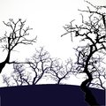 Halloween background with scary trees on white Stock Photography