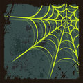 Halloween background with spider's web Stock Image